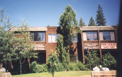 The Starlake Building